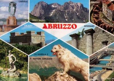 Abruzzo postcard picturing Maremma Sheepdog