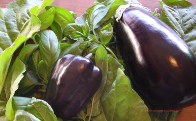 Eggplant and capscium