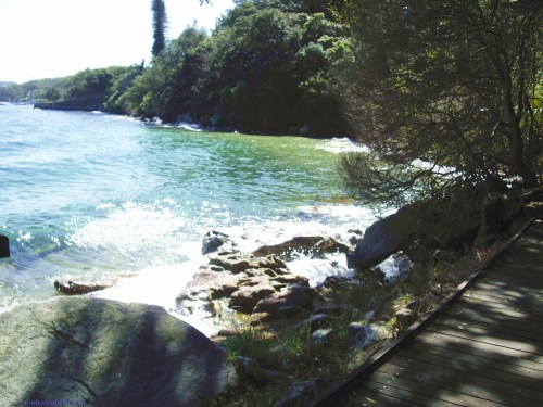 Hermitage Foreshore Track Sydney